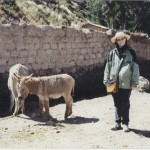 AnneBurros